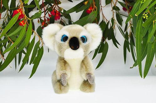 Koala Sparkle Eyes