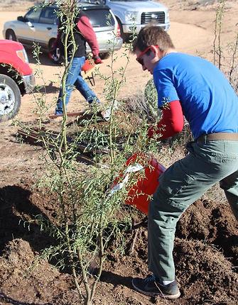 boy scouts tempe arizona-Eagle Project-community service