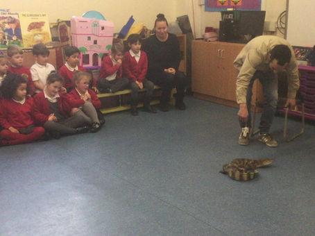 A Crocodile visits CRIS!
