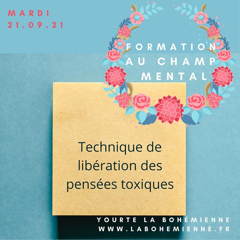FORMATION À LA THÉRAPIE DU CHAMP MENTAL