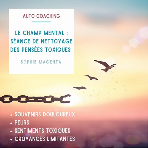 LE CHAMP MENTAL /Séance de Nettoyage des Pensées Toxiques