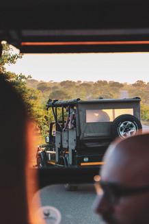 southafrica.jpeg