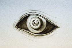 SENTENTIA ego (fragment)