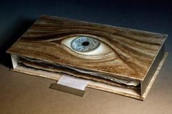 SENTENTIA codex in case