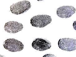 fingerprint-456486_1920.jpg