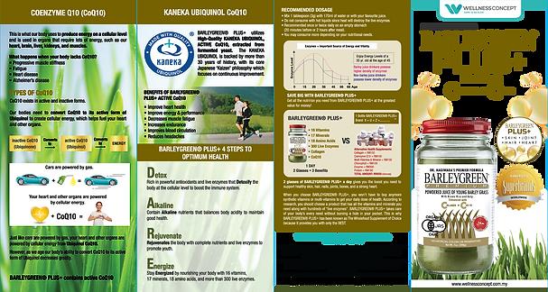29012021_BG Plus+ Brochure_A4_E_NEW Fina
