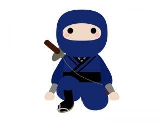 ninja_9487-300x225.jpg