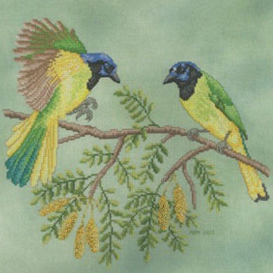 Green Jays | Crossed Wing Collection
