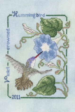 2011 Violet-Crowned Hummingbird | Crossed Wing Collection