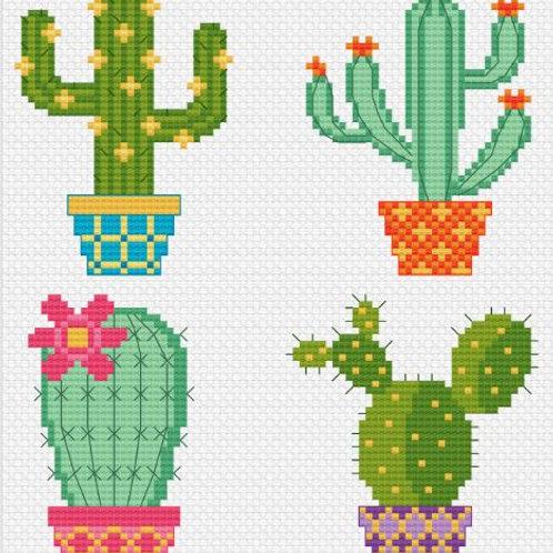 Cactus Pots   Tiny Modernist