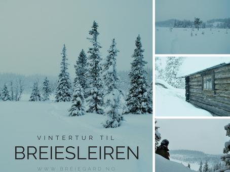 Vintertur til Breiesleiren