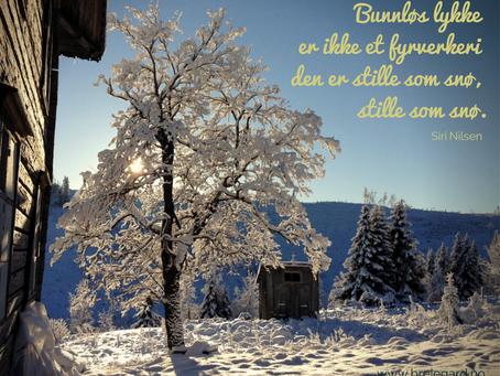 Vinterkafé på Breie