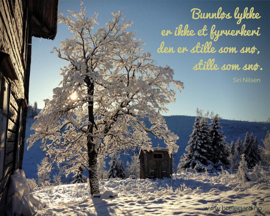 Vintersol på Breie