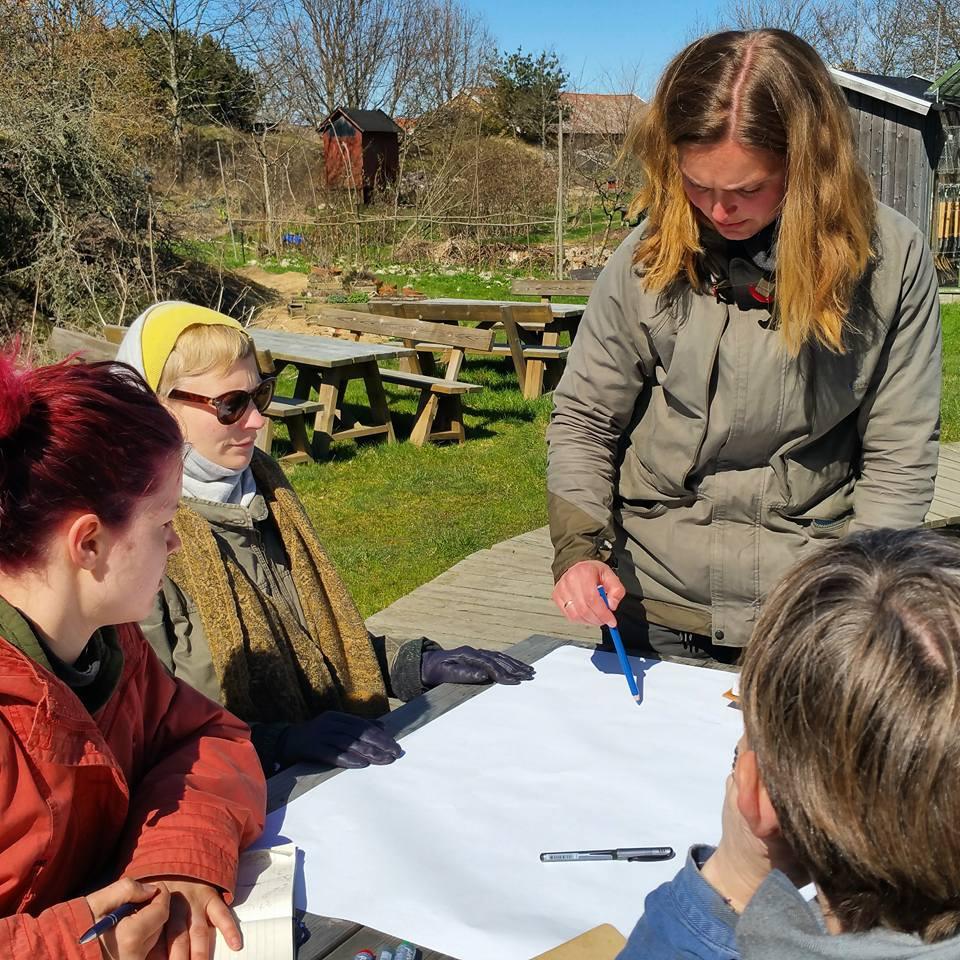 Konsentrasjon, kreativitet og Wild design i Kosters trädgård. Foto: Ida Walle Thorsen