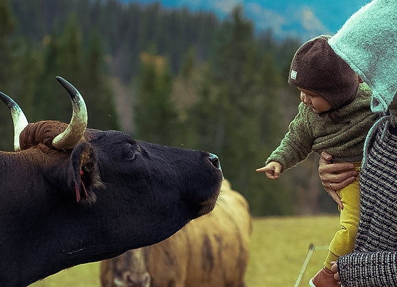 Økologisk kjøttdeig av gressfôra Dølafe