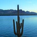 Saguaro Lake in Central Arizona.jpg