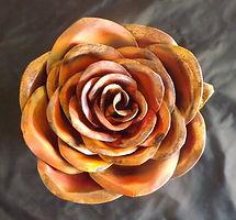 rose galaxy.jpg