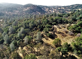 land views calaveras county acerage