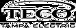 TECO Tampa Electric.png