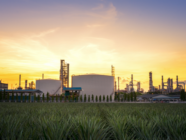 Florida's new law means local governments cannot ban natural gas