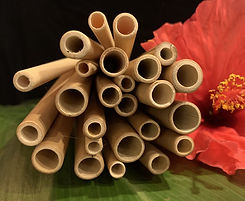 Bamboo Straws_Hawaii_Kauai Bamboo Straw_