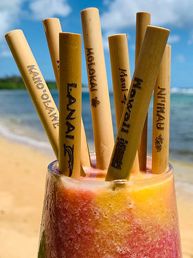 Bamboo Straw Set,kauai,Hawaii,Close up ,