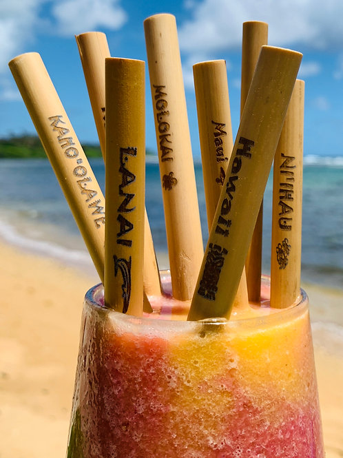 8 PACK of ISLAND LOGO STRAWS (includes bag & cleaner)
