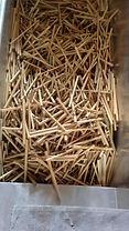 Bamboo Straws,Bamboo Kauai,Kauai Hawaii,