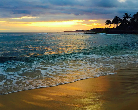 Kauai sunset with ocean and palm trees