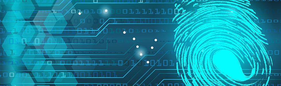 Digital Fingerprint 1.jpg