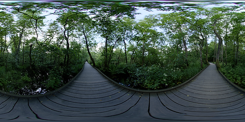Lake Boardwalk