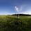 Thumbnail: A grass field during drone flight