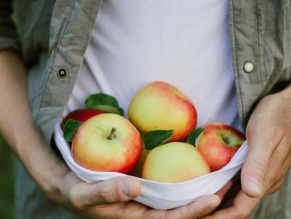 Lo que necesito saber para lograr una alimentación sostenible.