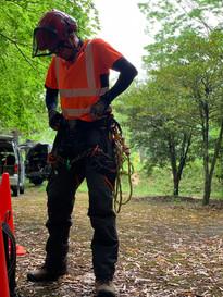 treecareservice02