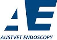 AE smaller logo.jpg