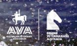 EVA AVA.PNG