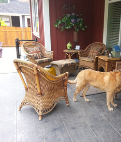pieces of furniture and a dog