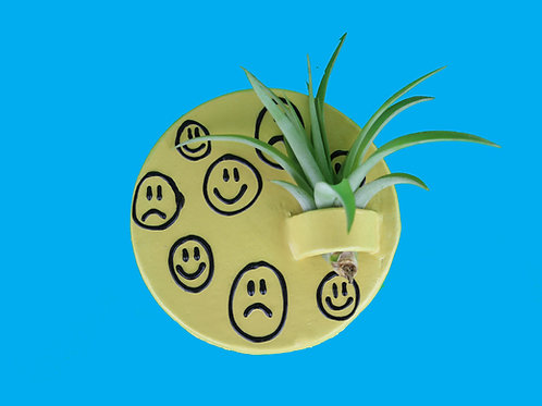 Smiley Air Plant Wall Hanger