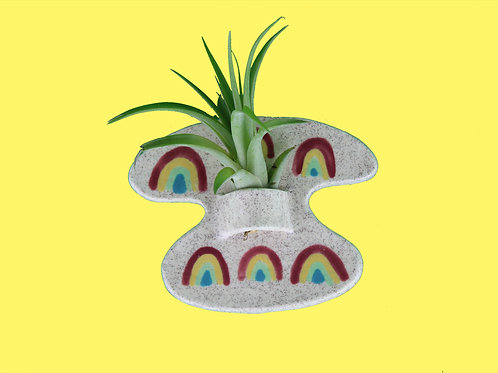 Rainbow Air Plant Wall Hanging