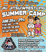 Ferny Jiu Jitsu Summer Camp Flyer