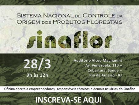 Oficina sobre a utilização do Sistema Nacional de Controle da Origem dos Produtos Florestais (Sinafl