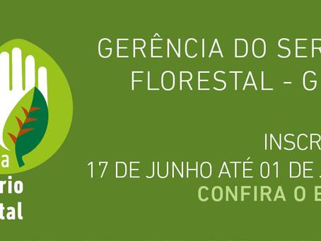 Aberto edital do Programa Voluntário Ambiental para a Gerência do Serviço Florestal do Inea