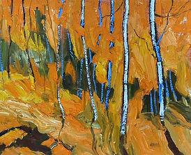 Robert Mcaffee-Birch Walk Mount Albert O
