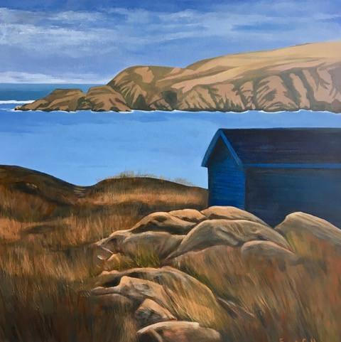 Newfoundland, Blue Cabin-