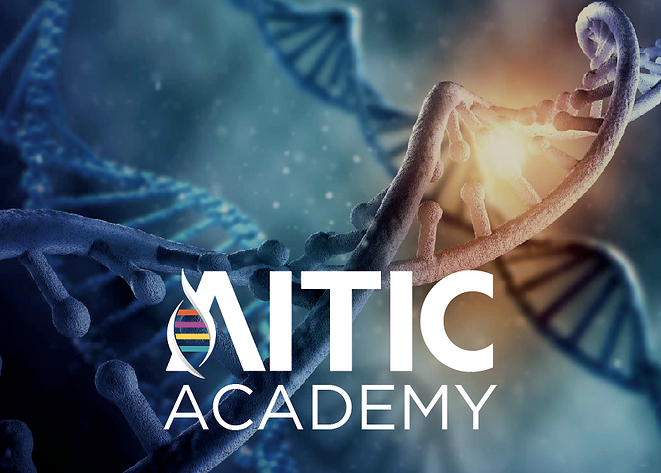 Logo-Aitic-Academy.png