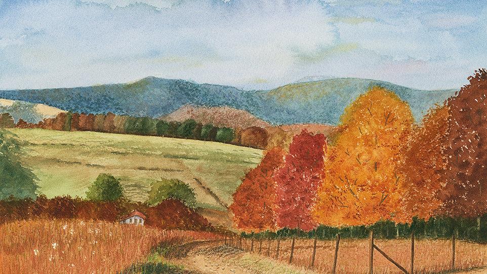 """Fall Colors"""