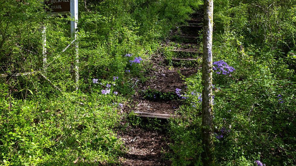 Rockpile Trail
