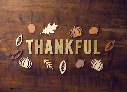 A Bizarre Thanksgiving