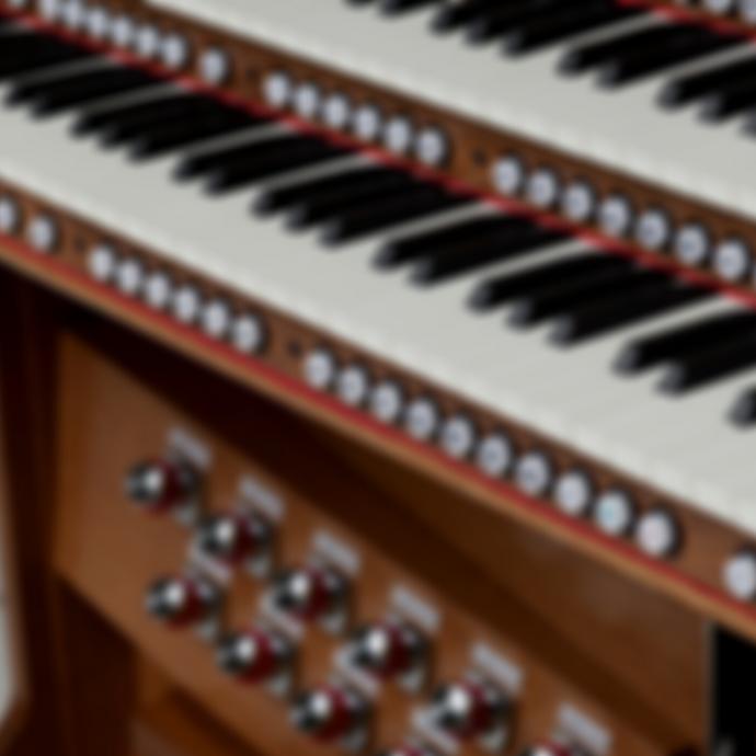 Blurred Organ SQ.png