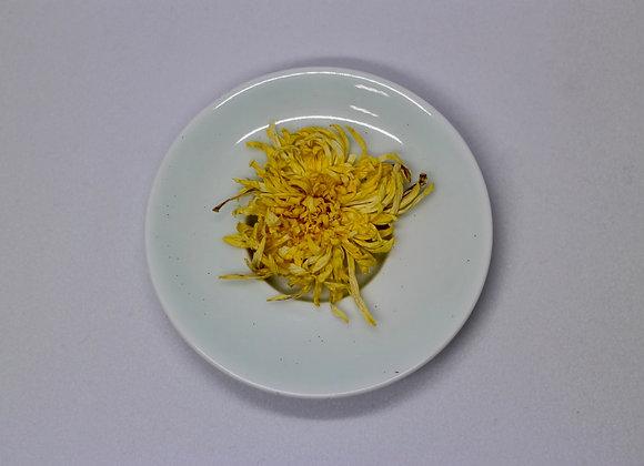 Chrysanthemums 金絲皇菊